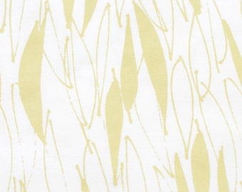 Eucalyptus in Husk Yellow : organic cotton