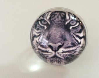 Bengal Tiger Ring - Tiger Ring - Tiger Jewelry - Bengal Tiger - Ring - Resin Ring - White Bengal Tiger - Photo Ring - Tiger - Ring