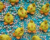 Royal icing chicks --Easter-- Edible handmade cupcake toppers cake decorations (12 pieces)