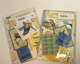 BIRDS Scrap Pack 45 pc. Mixed Media DIY Inspiration Ephemera Pack, Vintage Collage Paper Pieces, Vintage Altered Art Neutral Paper