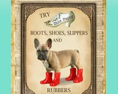 """Shoe Advertisement Giclee Print of Cute Black Mask Fawn Brown Taupe Red French Bulldog Puppy Wall Pop Art titled """"Kinky Boots"""""""