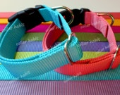 "Dog Collar Solid Colors - Heavy Duty 1"" Wide"