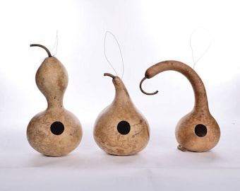 Three Natural Gourd Birdhouses; drilled gourd birdhouses
