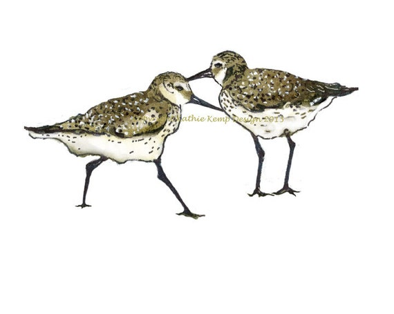 Sandpipers, The - Hang On Sloopy