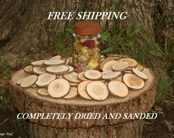"75 Quantity 2-3"" Cherry Tree Slices-COMPLETELY Dried and Sanded Wood Blanks- Name Tags-Wedding Decor-Free Drilling Offered"