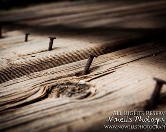 Rusted Nails in Old Wood Floor - Rural Southwest Arizona - Home Decor Photography Print