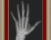Hand x-ray: cool cross-stitch pattern