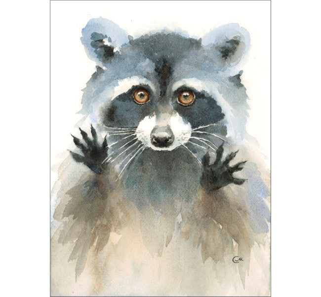 Watercolor Raccoon Original Painting 8x11 inches by ... Raccoon Painting