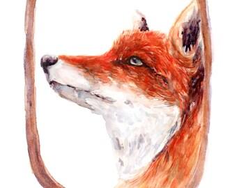 Fox - Print - 8 x 10