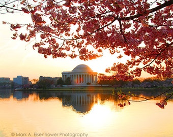 Cherry blossom Washington DC Photography Cherry Blossom Festival Sunrise Spring Photography Flower Print Sunset Photo Tidal Basin Flowers