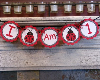 Lady Bug Age Banner- Lady Bug Party - LadyBug Banner - Lady Bug Decor