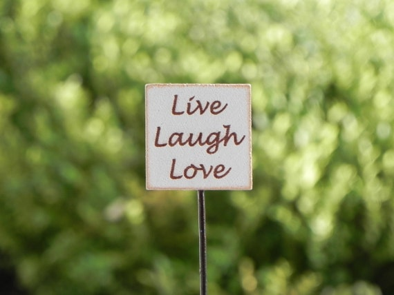 live love garden I love making fresh summer recipes with my homegrown fruits and veggies and you can too, whether they are from the backyard, the local farmer's market, or grocery store.