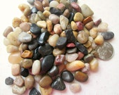 Colorful Pebbles Craft Supply for Terrariums, Vase Filler, DIY, Craft Projects, 1/2 Cup, 8 oz.