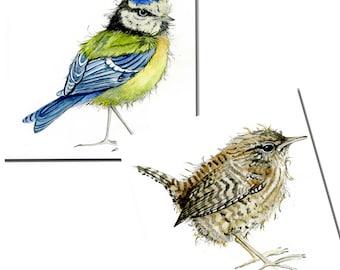 Bird Cards - Blue Tit and Wren - Pack of 6 - Watercolour, Notelets, Stationery, Blank inside, Garden Birds