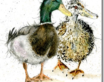 Pair of Mallard Ducks Greeting Card