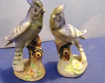 Blue Jay Salt and Pepper Shakers with Flowers - Enesco Japan
