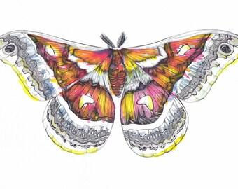 Jazz Moth Original A3 Artwork