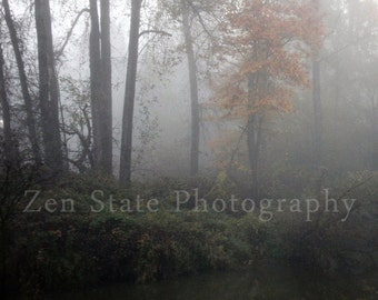 Foggy Forest Photograph. Nature Photography Print. Creek Photo Wall Art. Forest Landscape Photo Print, Framed Photo, or Canvas Print.