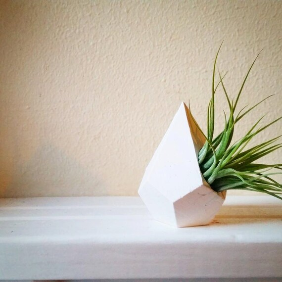 Geometric teardrop air plant holder, mini planter, naturalist gift, faceted container