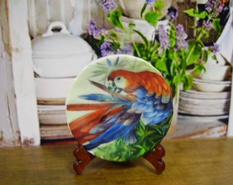 Colorful Parrot Miniature Plate for Dollhouse 1:12 scale