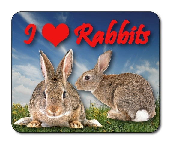 Rabbits - I Love Rabbits Mouse Mat Mouse Pad