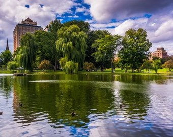 Public garden urban photography fine art print or wrapped canvas