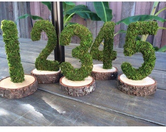 Moss Covered Table Numbers, Moss Photo Prop, Moss Party Decorations