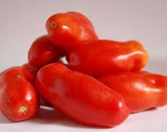 Organically Grown, non-GMO, Heirloom San Marzano Paste Tomato Seeds