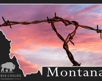 Montana Postcard- Barbed Heart