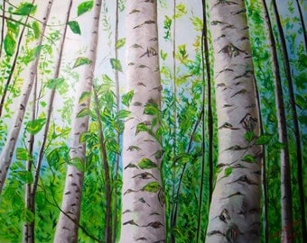 Birch trees in the sunlight 30x40 inches