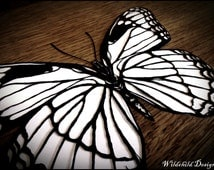 Viceroy North American Butterfly Limenitis Archippus Angel Omen Paper Cut Template for Personal Use Papercut Cutting