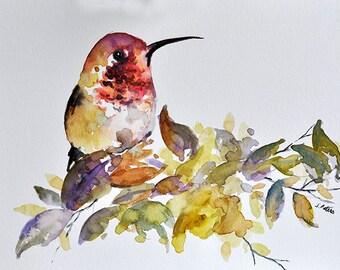 ORIGINAL Watercolor Bird Painting, Red Yellow Hummingbird 6x8