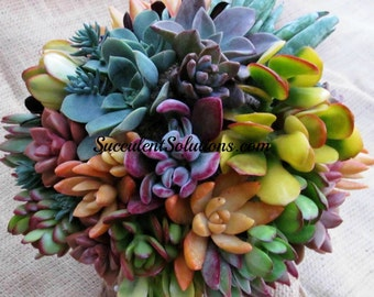 Bright and Beautiful Wedding Bouquet in a Rainbow of Colors