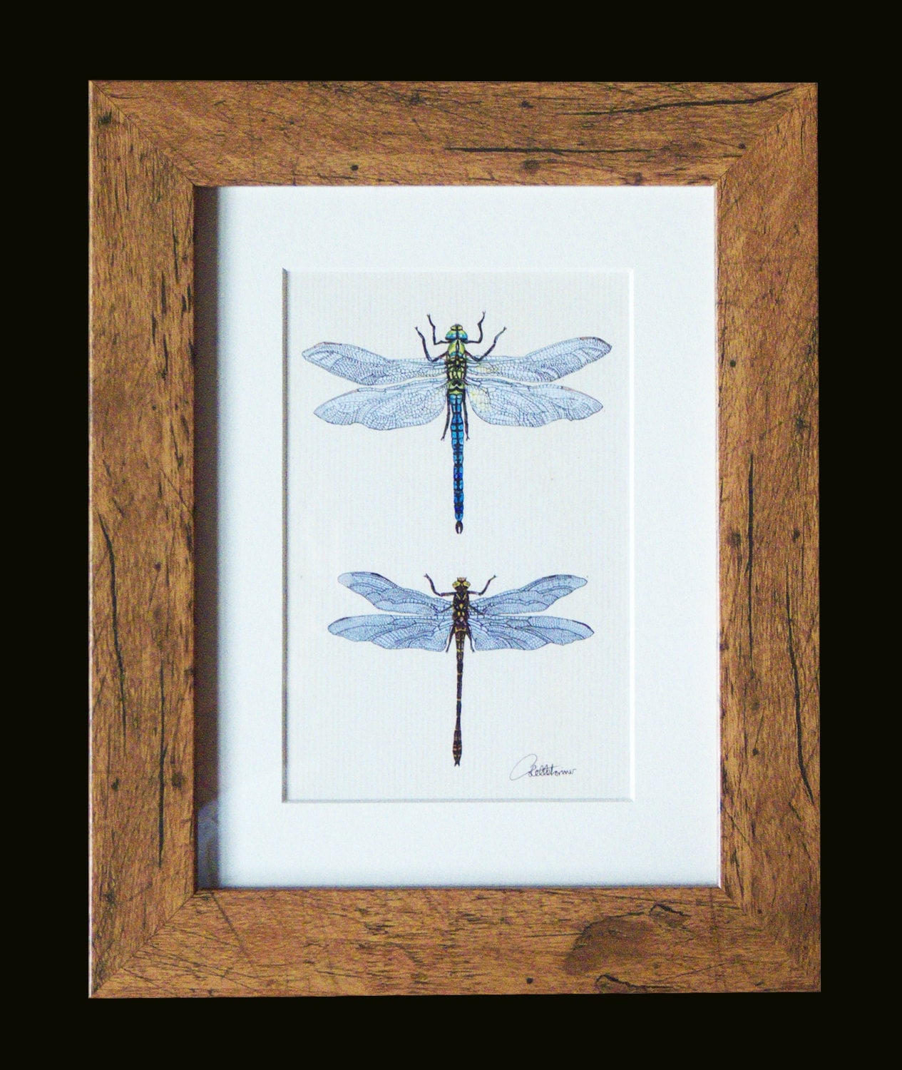 Dragonfly picturedragonfly printdragonfly wall decor for Dragonfly mural