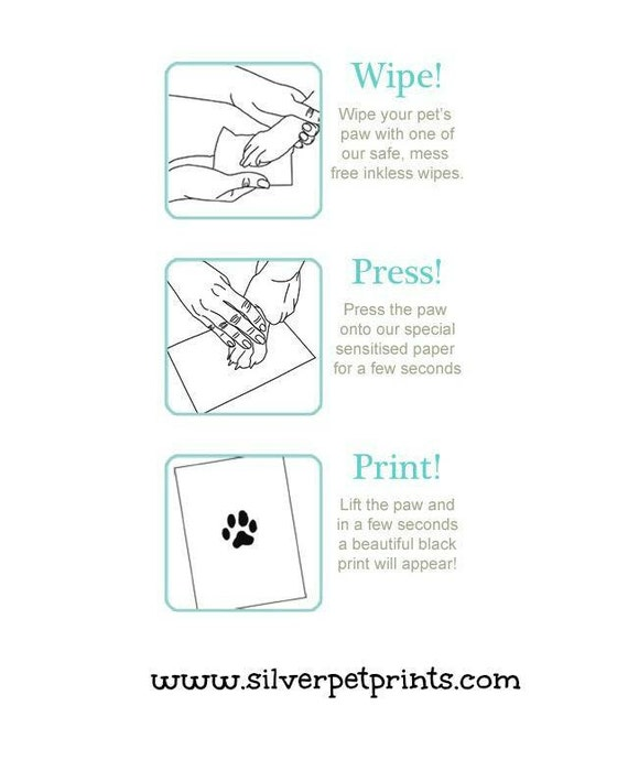 pet scan preparation instructions