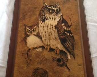 10% OFF SALE Vintage Owl Picture/ Hoot Owl/ Screech Owl Decor