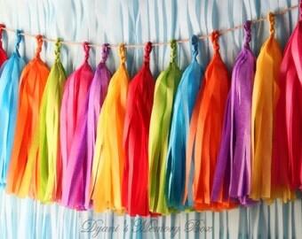 FIESTA Handmade Tissue Tassel Garland / Fiesta Tassel Backdrop / Fiesta Bunting / Bright Colors Garland