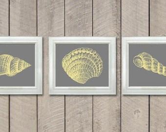 Sea Shells Set of 3 Prints Grey Gray Yellow Wall Decor Nautical Print Ocean Art Marine Beach House Bathroom Nursery Shell
