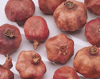 Pomegranates, Dried Pomegranates,  Whole Pomegranates, Matte Finish