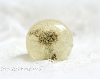Paperweight resin whole dandelion, Wish home decor, Paperweight OOAK, paperweight puff dandelion, resin ball paperweight, paperweight gift
