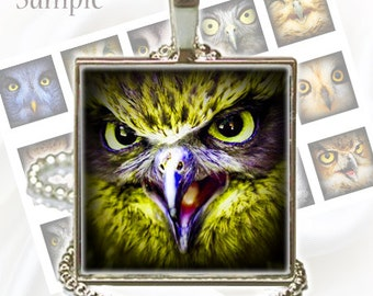 Owls - Digital images - 1 inch squares for Jewelry Making, Digital Collage Sheets, Instant Download, BUY 2 GET 1 FREE