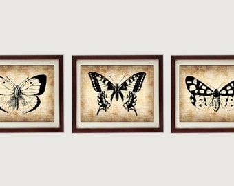 Butterflies Vintage Style Set of 3 Prints Butterfly Art Parchment Paper Old Antique Printable INSTANT DOWNLOAD Animal Art Print