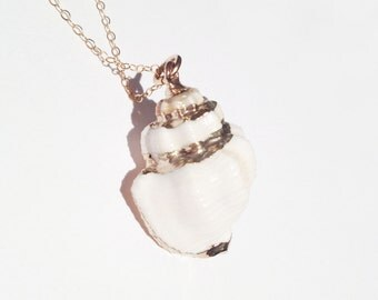 White and Gold Conch Seashell Tarnish Resistant Necklace