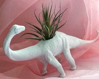 Dinosaur Planter, Air Plant, White, Dinosaur, Diplodocus, Wedding, White Dinosaur, Table Decor, Bridal Shower, Terrariums