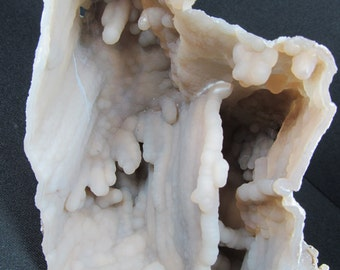 Agatized Fossil Coral - Withlacooche River, Florida - Cabinet Specimen