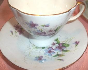Vintage Old Royal Bone China - Violets - Pale Blue Background