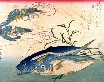 Aji/Muroaji/Maaji and Ebi (horse mackerel & shrimp/prawn) - Japanese woodblock print reproduction Ando Hiroshige