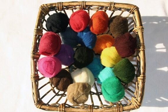 20 color Needle Felting Wool Pack Endangered Hog Island sheep