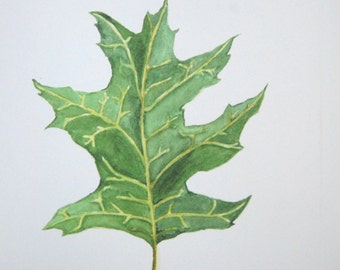 5X7 Oak Leaf Watercolor tree art watercolor painting leaf Painting leaf Art leaf Print botanical Painting Wall art decor tree watercolor