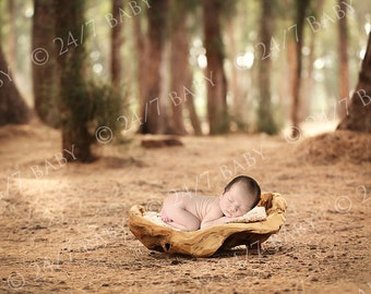 Digital Backdrop Dark Forest Trees Driftwood Prop Scene Newborn Baby Photography